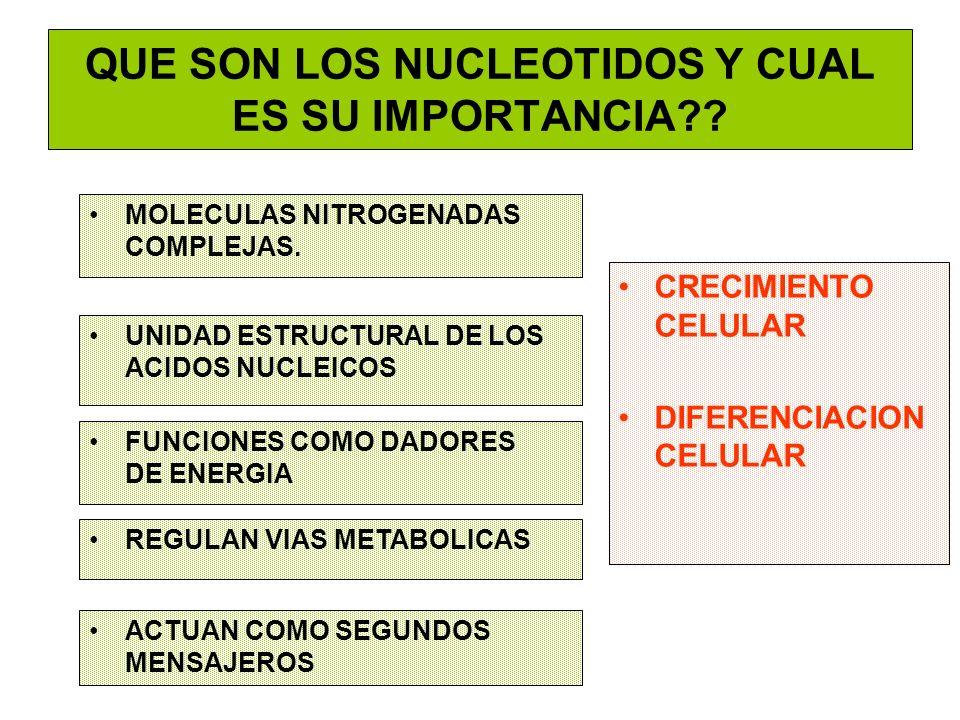 QUE SON LOS NUCLEOTIDOS Y CUAL ES SU IMPORTANCIA?? MOLECULAS NITROGENADAS COMPLEJAS. CRECIMIENTO CELULAR DIFERENCIACION CELULAR UNIDAD ESTRUCTURAL DE