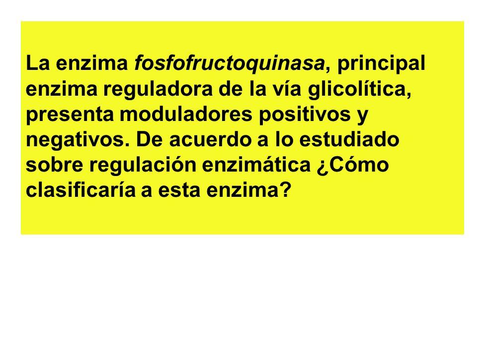 La enzima fosfofructoquinasa, principal enzima reguladora de la vía glicolítica, presenta moduladores positivos y negativos. De acuerdo a lo estudiado