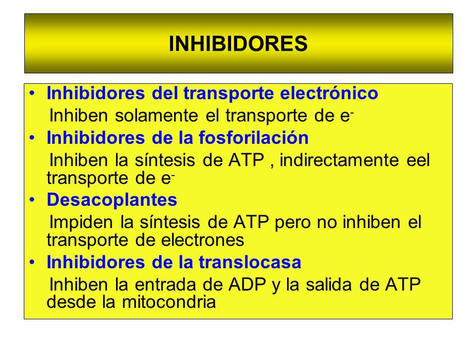 INHIBIDORES Inhibidores del transporte electrónico Inhiben solamente el transporte de e - Inhibidores de la fosforilación Inhiben la síntesis de ATP,