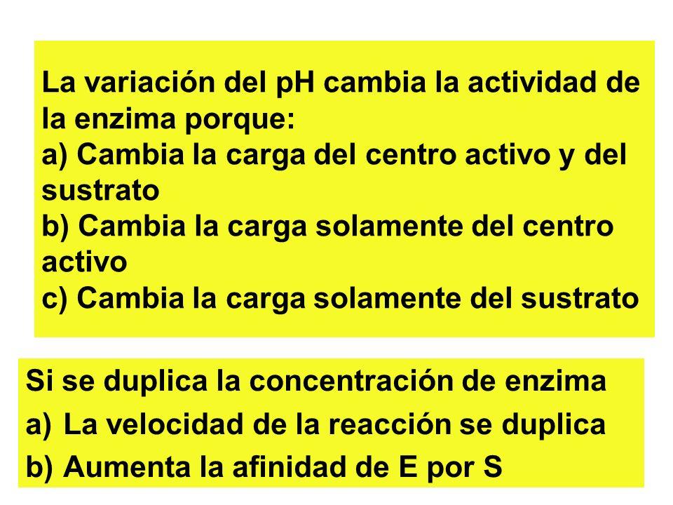 SINTESIS DE ATP TEORIA QUIMIOSMOTICA MATRIZ ESPACIO INTERMEMBRANA