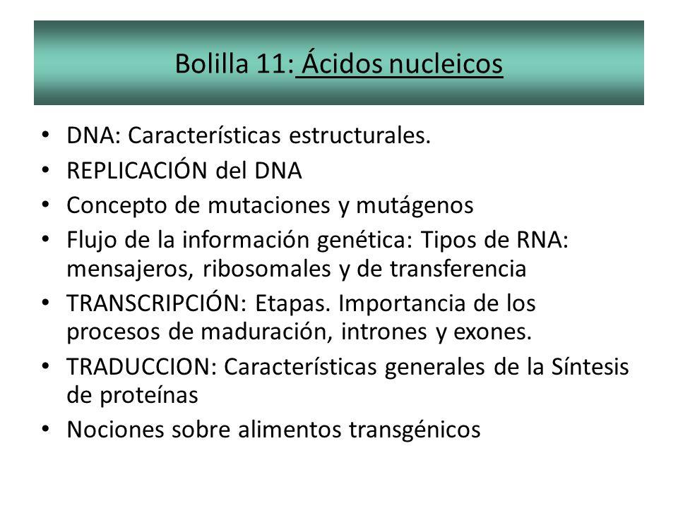 Bolilla 11: Ácidos nucleicos DNA: Características estructurales. REPLICACIÓN del DNA Concepto de mutaciones y mutágenos Flujo de la información genéti