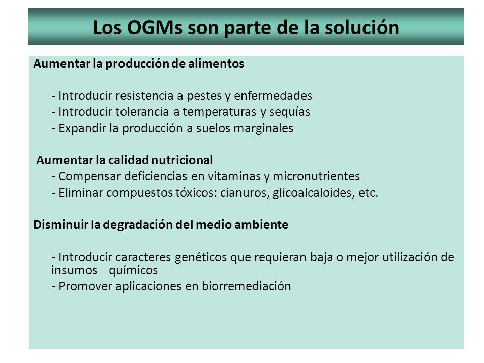 Los OGMs son parte de la solución Aumentar la producción de alimentos - Introducir resistencia a pestes y enfermedades - Introducir tolerancia a tempe