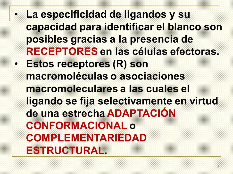 RECEPTORES (R): Son macromoléculas cuya función es reconocer y fijar moléculas que provienen del exterior de la célula.