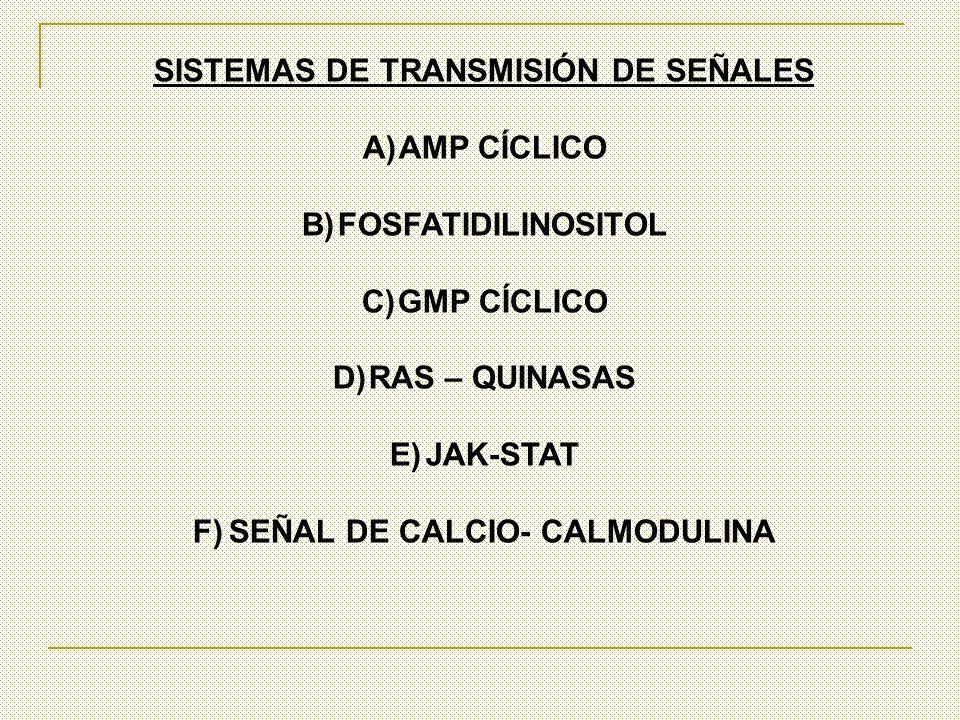 SISTEMAS DE TRANSMISIÓN DE SEÑALES A)AMP CÍCLICO B)FOSFATIDILINOSITOL C)GMP CÍCLICO D)RAS – QUINASAS E)JAK-STAT F)SEÑAL DE CALCIO- CALMODULINA