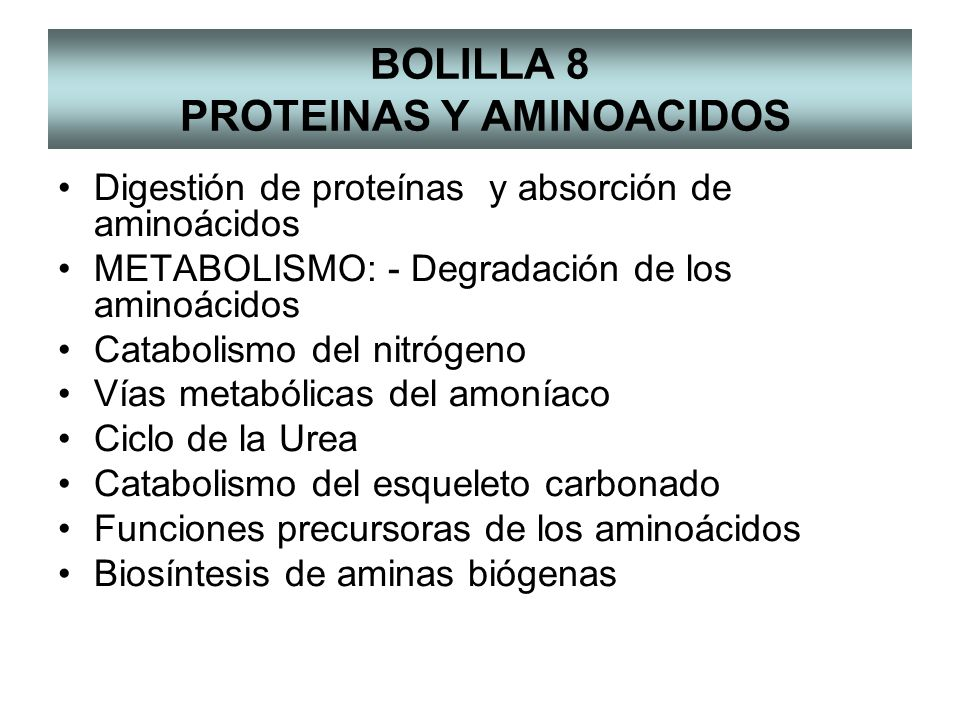 BOLILLA 8 PROTEINAS Y AMINOACIDOS Digestión de proteínas y absorción de aminoácidos METABOLISMO: - Degradación de los aminoácidos Catabolismo del nitrógeno Vías metabólicas del amoníaco Ciclo de la Urea Catabolismo del esqueleto carbonado Funciones precursoras de los aminoácidos Biosíntesis de aminas biógenas