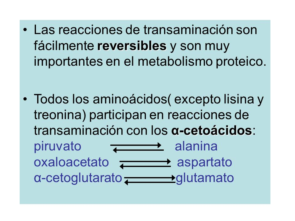 reversiblesLas reacciones de transaminación son fácilmente reversibles y son muy importantes en el metabolismo proteico.