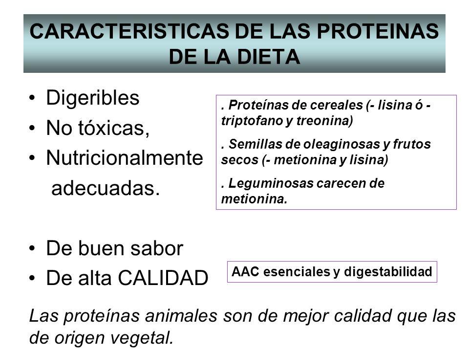 CARACTERISTICAS DE LAS PROTEINAS DE LA DIETA Digeribles No tóxicas, Nutricionalmente adecuadas.