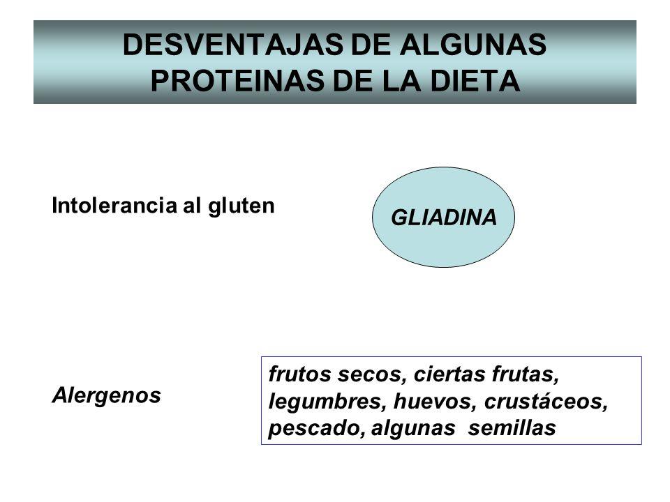 DESVENTAJAS DE ALGUNAS PROTEINAS DE LA DIETA Intolerancia al gluten Alergenos frutos secos, ciertas frutas, legumbres, huevos, crustáceos, pescado, algunas semillas GLIADINA