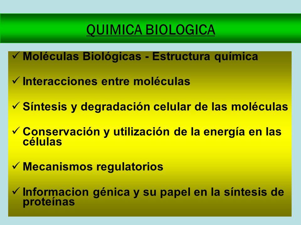 QUIMICA BIOLOGICA Moléculas Biológicas - Estructura química Interacciones entre moléculas Síntesis y degradación celular de las moléculas Conservación