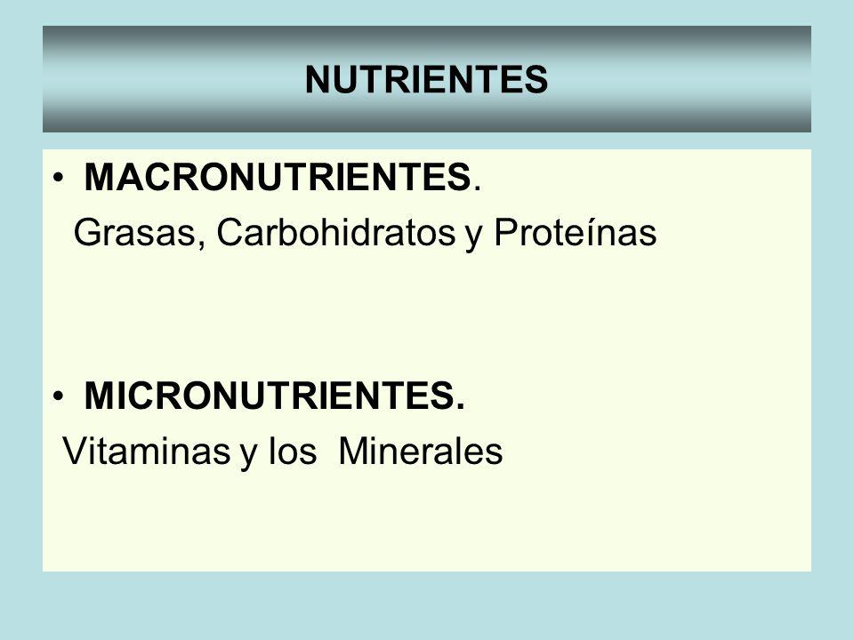 NUTRIENTES MACRONUTRIENTES. Grasas, Carbohidratos y Proteínas MICRONUTRIENTES. Vitaminas y los Minerales