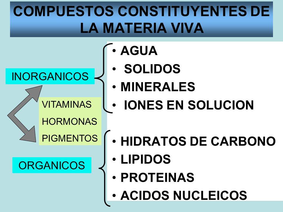 COMPUESTOS CONSTITUYENTES DE LA MATERIA VIVA AGUA SOLIDOS MINERALES IONES EN SOLUCION HIDRATOS DE CARBONO LIPIDOS PROTEINAS ACIDOS NUCLEICOS INORGANIC