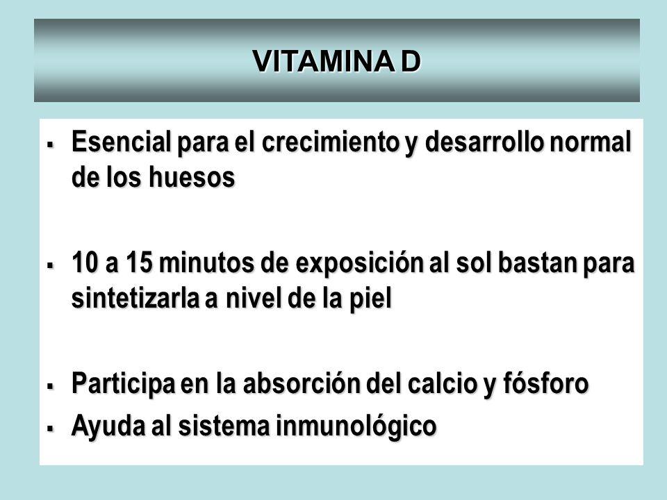 VITAMINA D Esencial para el crecimiento y desarrollo normal de los huesos Esencial para el crecimiento y desarrollo normal de los huesos 10 a 15 minut