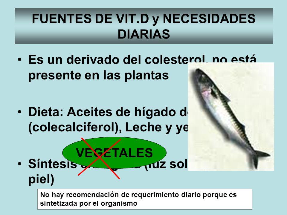 Es un derivado del colesterol, no está presente en las plantas Dieta: Aceites de hígado de pescado (colecalciferol), Leche y yema de huevo Síntesis en