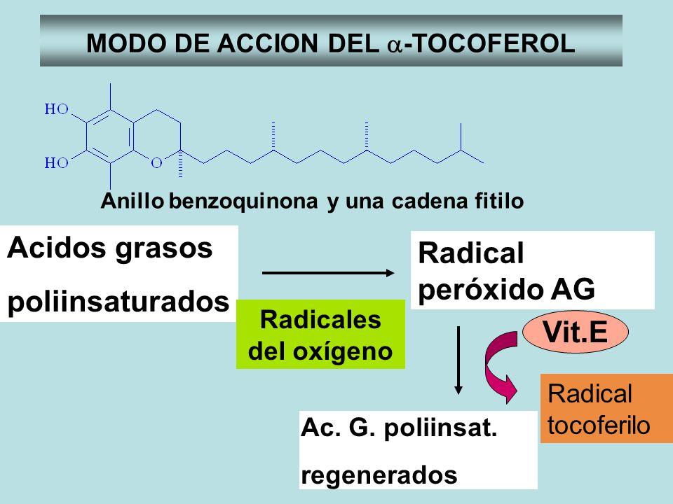 MODO DE ACCION DEL -TOCOFEROL Anillo benzoquinona y una cadena fitilo Acidos grasos poliinsaturados Radical peróxido AG Ac. G. poliinsat. regenerados