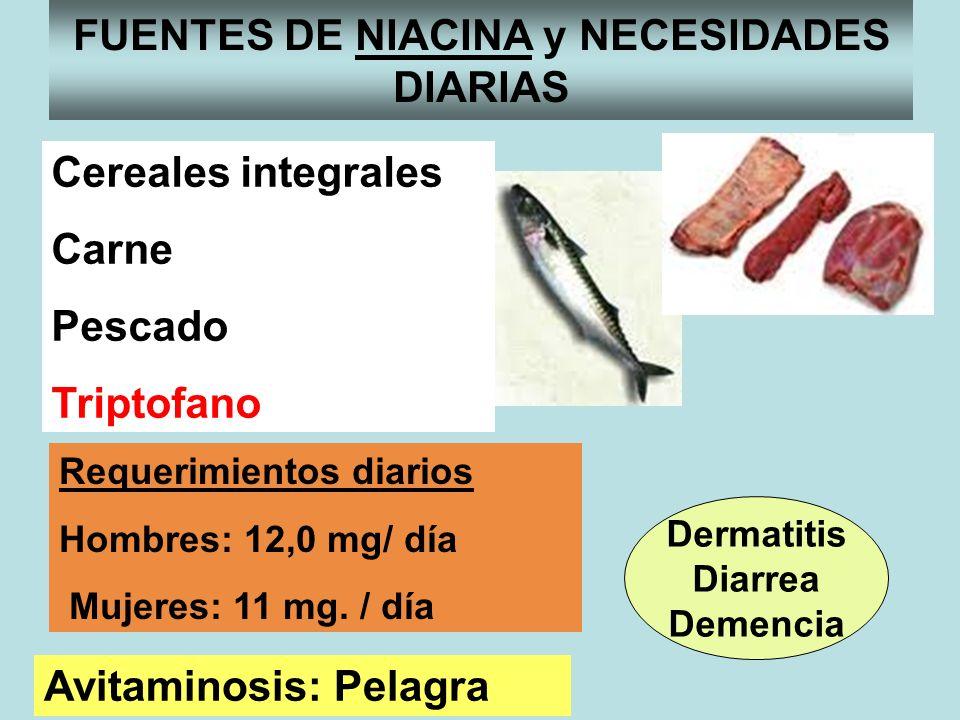 FUNCIONES FUENTES DE NIACINA y NECESIDADES DIARIAS Requerimientos diarios Hombres: 12,0 mg/ día Mujeres: 11 mg. / día Cereales integrales Carne Pescad