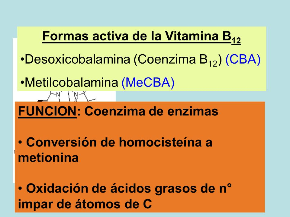 FUNCION: Coenzima de enzimas Conversión de homocisteína a metionina Oxidación de ácidos grasos de n° impar de átomos de C Formas activa de la Vitamina