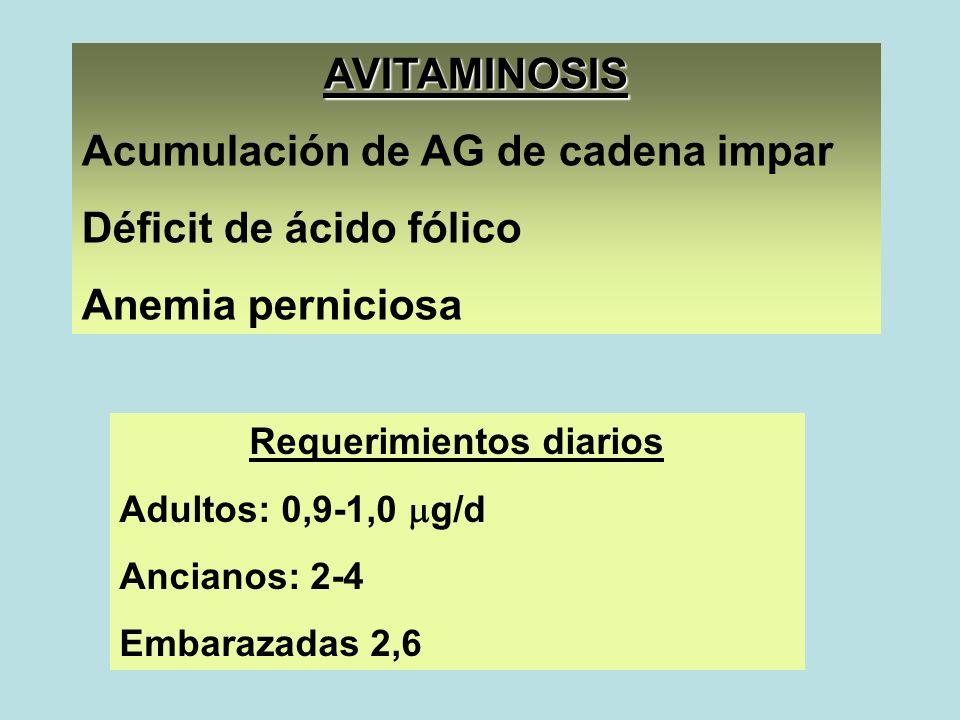 AVITAMINOSIS Acumulación de AG de cadena impar Déficit de ácido fólico Anemia perniciosa Requerimientos diarios Adultos: 0,9-1,0 g/d Ancianos: 2-4 Emb