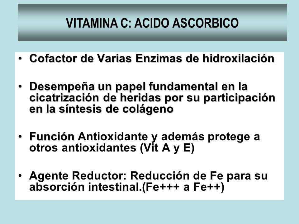 VITAMINA C: ACIDO ASCORBICO Cofactor de Varias Enzimas de hidroxilaciónCofactor de Varias Enzimas de hidroxilación Desempeña un papel fundamental en l