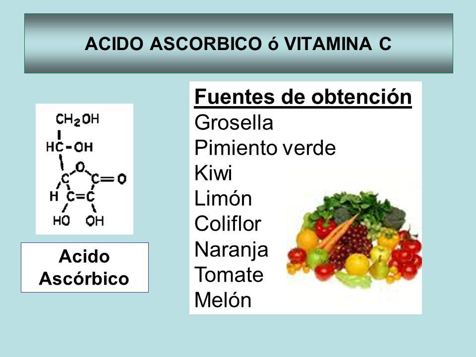 ACIDO ASCORBICO ó VITAMINA C Acido Ascórbico Fuentes de obtención Grosella Pimiento verde Kiwi Limón Coliflor Naranja Tomate Melón