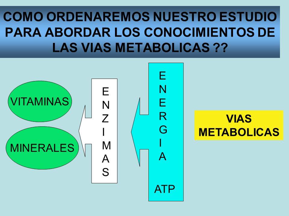 VITAMINAS HIDROSOLUBLES Vitamina C, Vitaminas del Complejo B: B12, B2, B6, niacina, ácido fólico, biotina y ác.