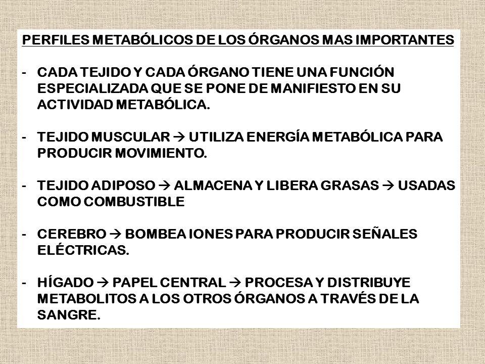 PERFILES METABÓLICOS DE LOS ÓRGANOS MAS IMPORTANTES -CADA TEJIDO Y CADA ÓRGANO TIENE UNA FUNCIÓN ESPECIALIZADA QUE SE PONE DE MANIFIESTO EN SU ACTIVID