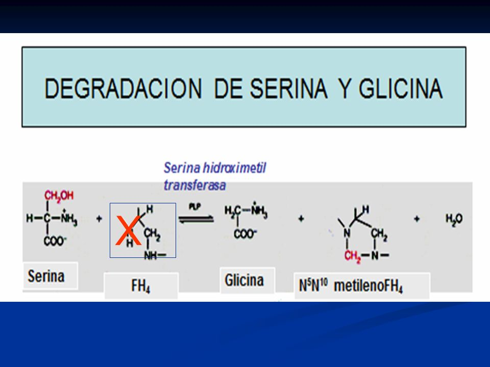 BIOSINTESIS DE ALA (Acido -Aminolevulínico) Glicina ALAS-PPL Succinil-CoA CoA-SH ALA -Aminolevulinato sintasa AC.DELTA AMINO LEVULINICO EN MITOCONDRIA X