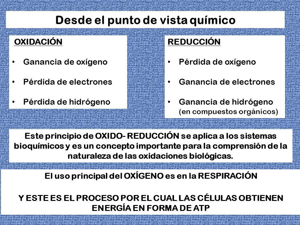 OXIDACION-REDUCCION OXIDACION REDUCCION + - O2O2 H + - O2O2 H - e-e- e-e- +