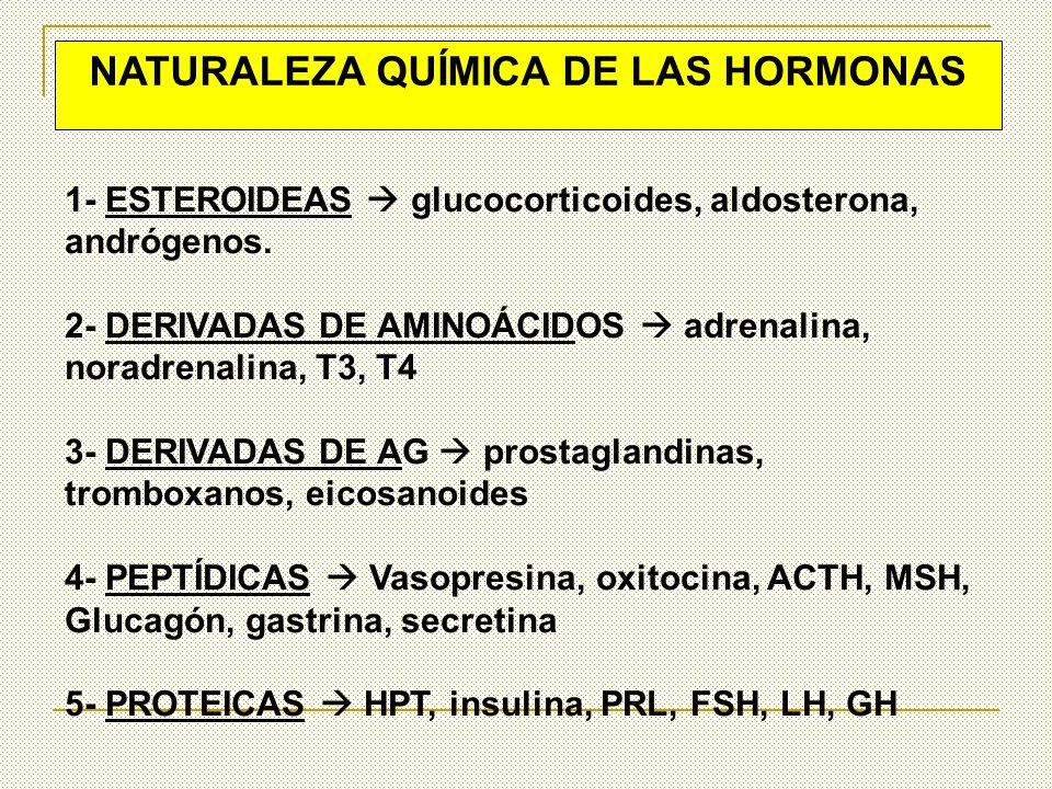 1- ESTEROIDEAS glucocorticoides, aldosterona, andrógenos. 2- DERIVADAS DE AMINOÁCIDOS adrenalina, noradrenalina, T3, T4 3- DERIVADAS DE AG prostagland
