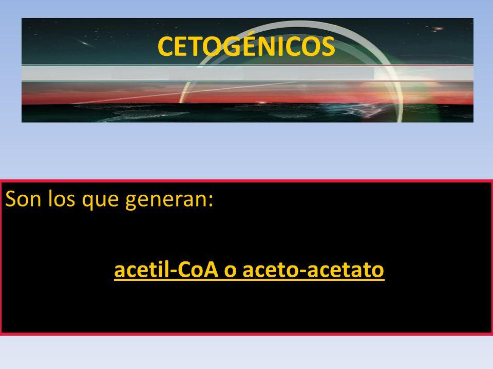 CETOGÉNICOS Son los que generan: acetil-CoA o aceto-acetato