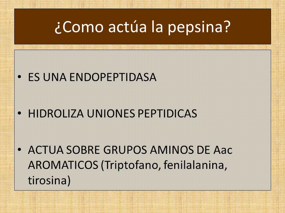 ¿Como actúa la pepsina? ES UNA ENDOPEPTIDASA HIDROLIZA UNIONES PEPTIDICAS ACTUA SOBRE GRUPOS AMINOS DE Aac AROMATICOS (Triptofano, fenilalanina, tiros