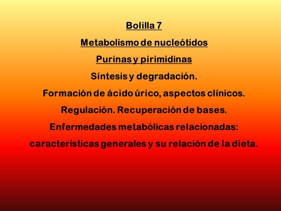 Bolilla 7 Metabolismo de nucleótidos Purinas y pirimidinas Síntesis y degradación. Formación de ácido úrico, aspectos clínicos. Regulación. Recuperaci