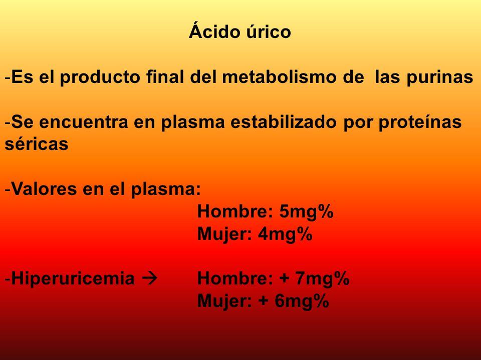 Ácido úrico -Es el producto final del metabolismo de las purinas -Se encuentra en plasma estabilizado por proteínas séricas -Valores en el plasma: Hom