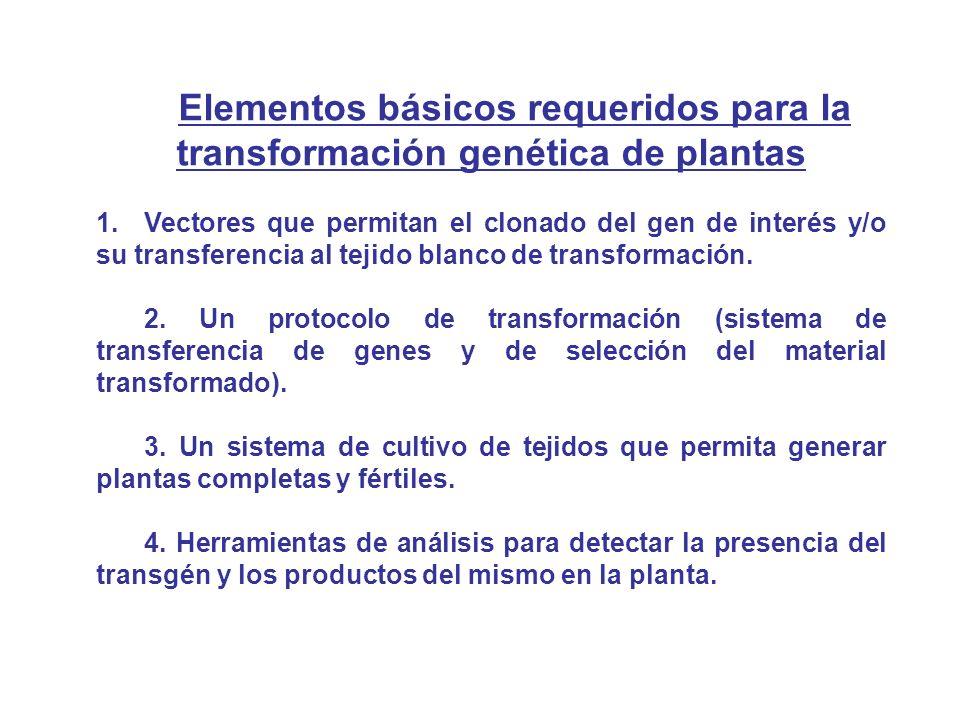 Elementos básicos requeridos para la transformación genética de plantas 1.Vectores que permitan el clonado del gen de interés y/o su transferencia al