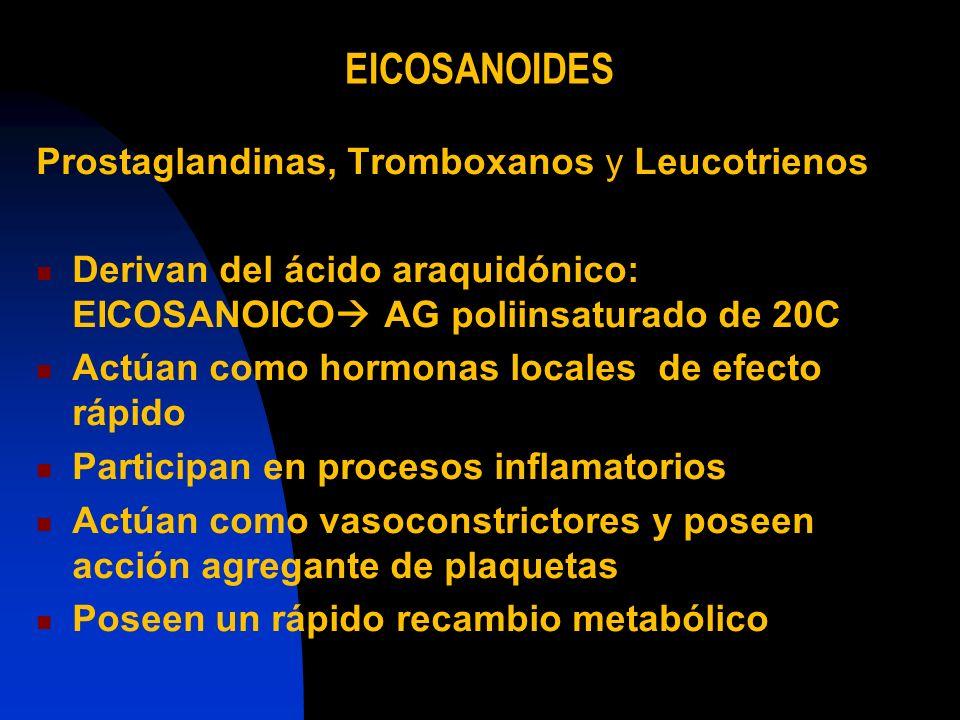 EICOSANOIDES Prostaglandinas, Tromboxanos y Leucotrienos Derivan del ácido araquidónico: EICOSANOICO AG poliinsaturado de 20C Actúan como hormonas loc