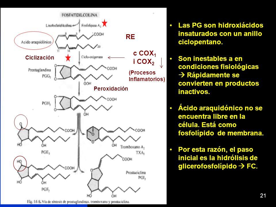 21 Las PG son hidroxiácidos insaturados con un anillo ciclopentano. Son inestables a en condiciones fisiológicas Rápidamente se convierten en producto