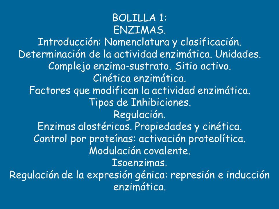 BOLILLA 1: ENZIMAS. Introducción: Nomenclatura y clasificación. Determinación de la actividad enzimática. Unidades. Complejo enzima-sustrato. Sitio ac