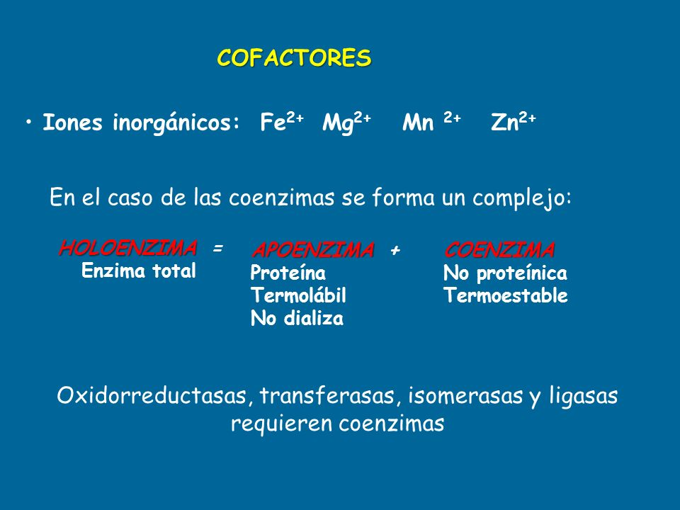 COFACTORES Iones inorgánicos: Fe 2+ Mg 2+ Mn 2+ Zn 2+ HOLOENZIMA HOLOENZIMA = Enzima total APOENZIMA APOENZIMA + Proteína Termolábil No dializaCOENZIM