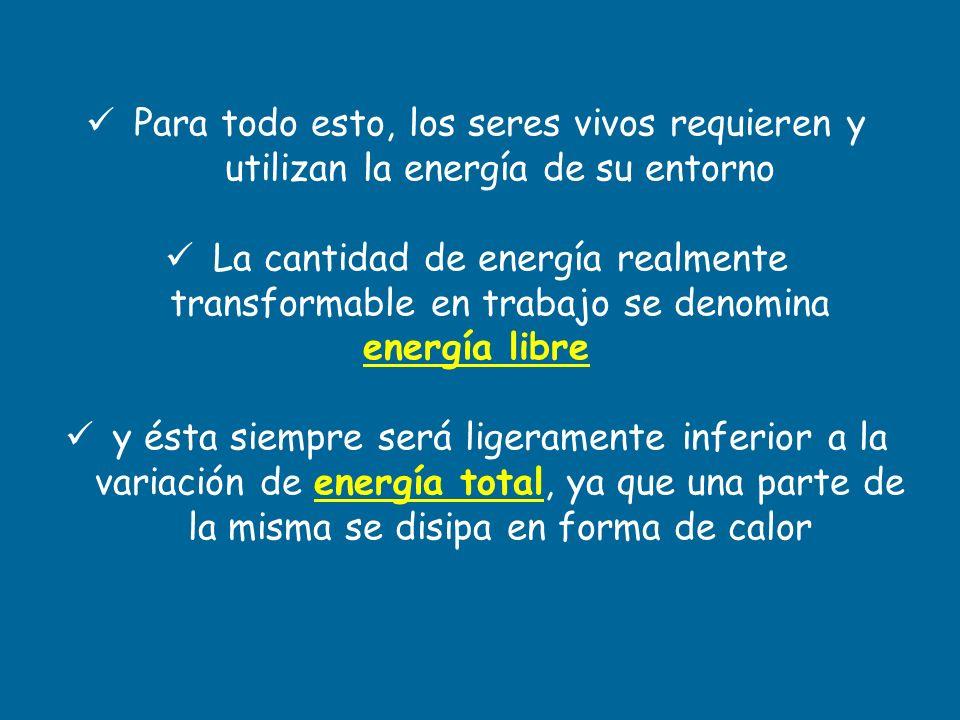 Para todo esto, los seres vivos requieren y utilizan la energía de su entorno La cantidad de energía realmente transformable en trabajo se denomina en