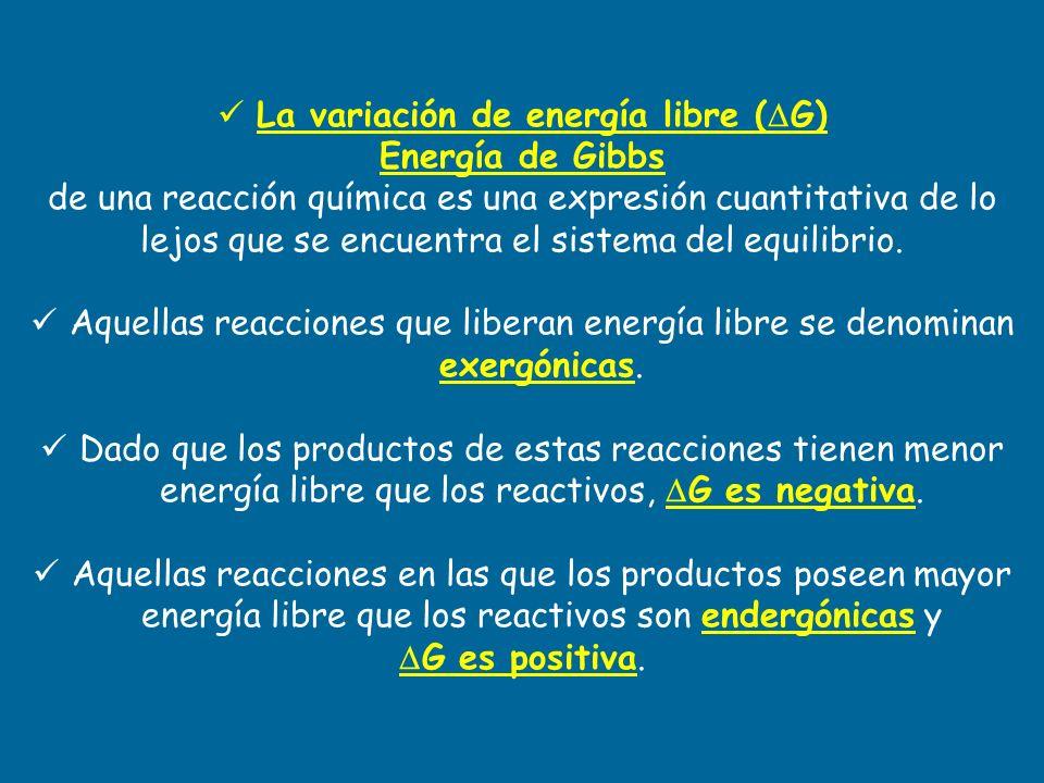 La variación de energía libre ( G) Energía de Gibbs de una reacción química es una expresión cuantitativa de lo lejos que se encuentra el sistema del