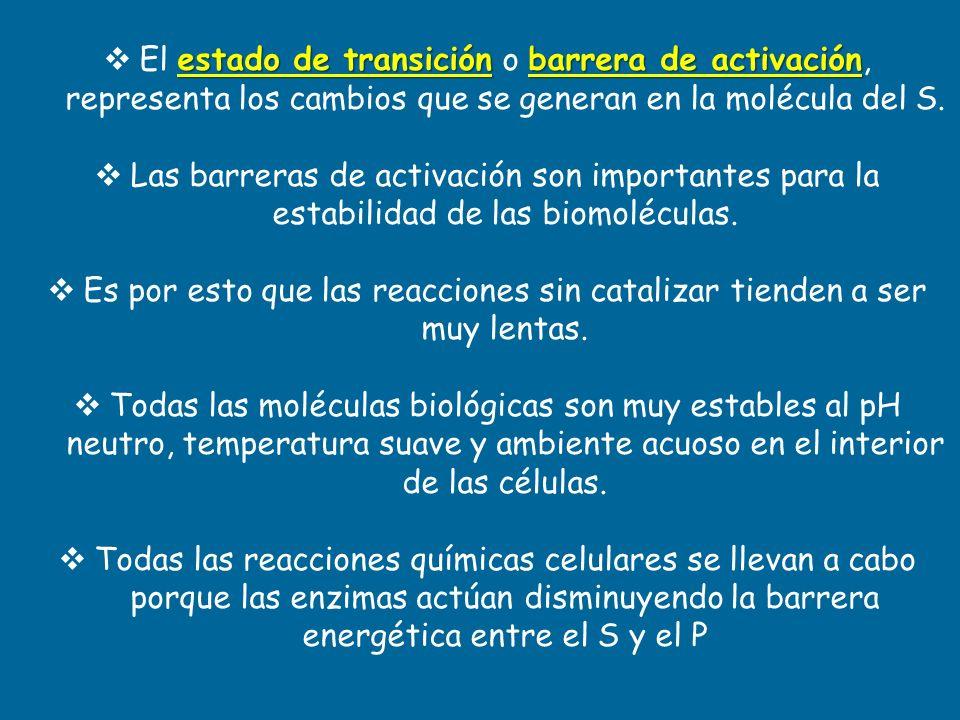 estado de transiciónbarrera de activación El estado de transición o barrera de activación, representa los cambios que se generan en la molécula del S.