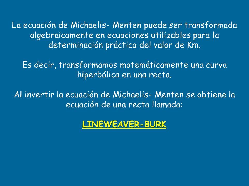 La ecuación de Michaelis- Menten puede ser transformada algebraicamente en ecuaciones utilizables para la determinación práctica del valor de Km. Es d