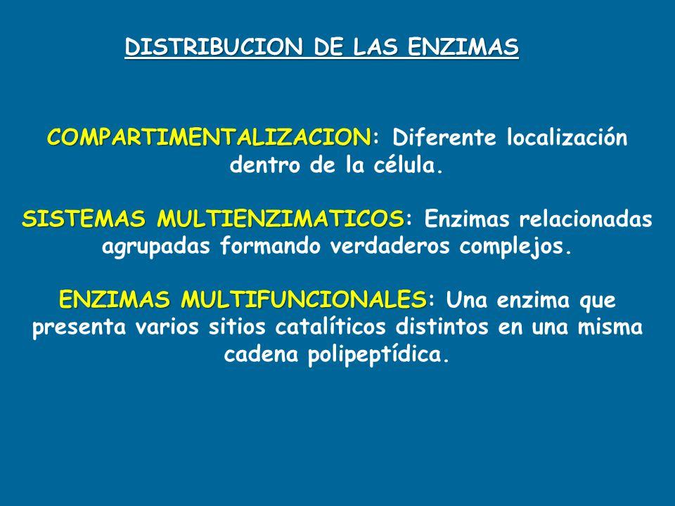 COMPARTIMENTALIZACION COMPARTIMENTALIZACION: Diferente localización dentro de la célula. SISTEMAS MULTIENZIMATICOS SISTEMAS MULTIENZIMATICOS: Enzimas