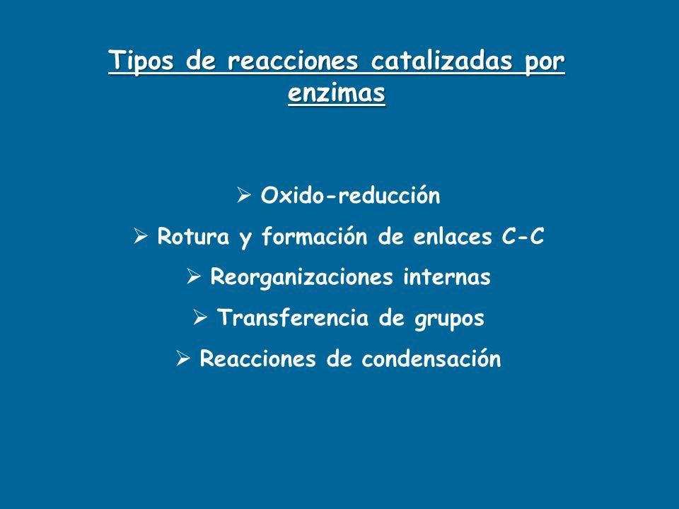 Oxido-reducción Rotura y formación de enlaces C-C Reorganizaciones internas Transferencia de grupos Reacciones de condensación Tipos de reacciones cat