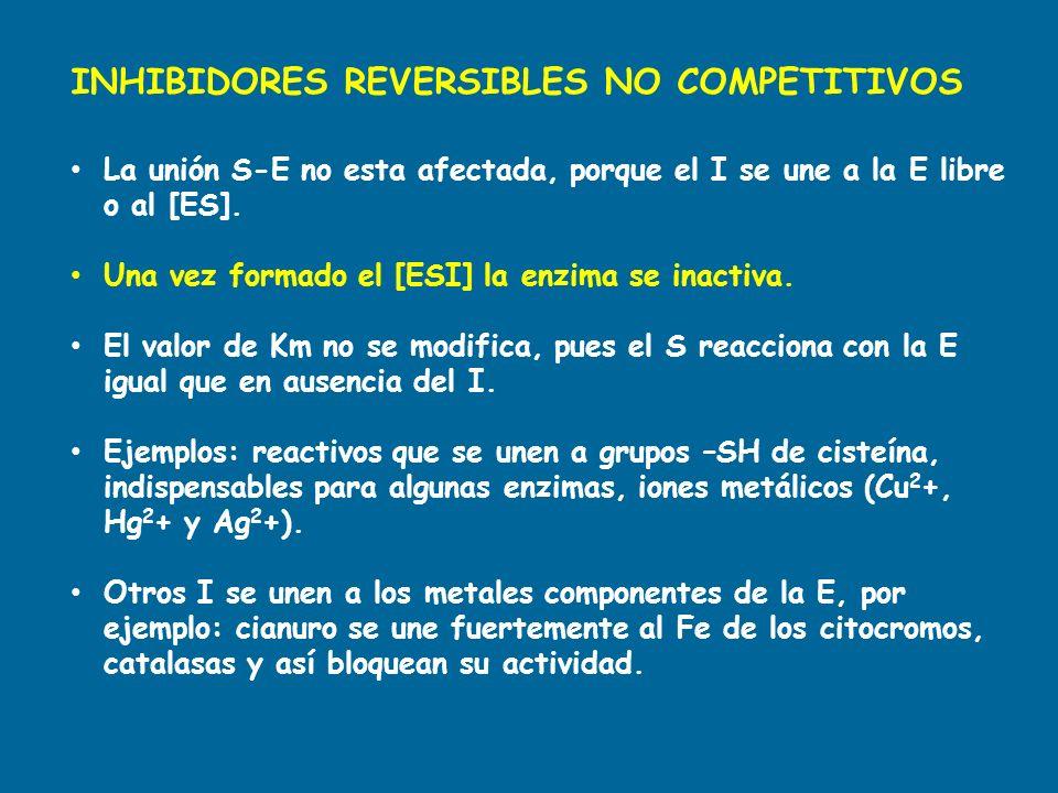 INHIBIDORES REVERSIBLES NO COMPETITIVOS La unión S-E no esta afectada, porque el I se une a la E libre o al [ES]. Una vez formado el [ESI] la enzima s