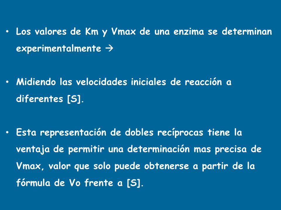 INHIBIDORES REVERSIBLES NO COMPETITIVOS La unión S-E no esta afectada, porque el I se une a la E libre o al [ES].