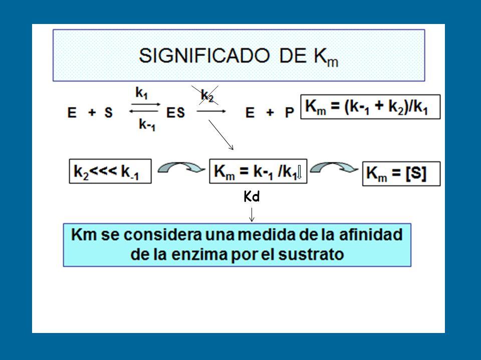Incorpora las K de velocidad de todas las reacciones entre [ES] y los P Número de recambio