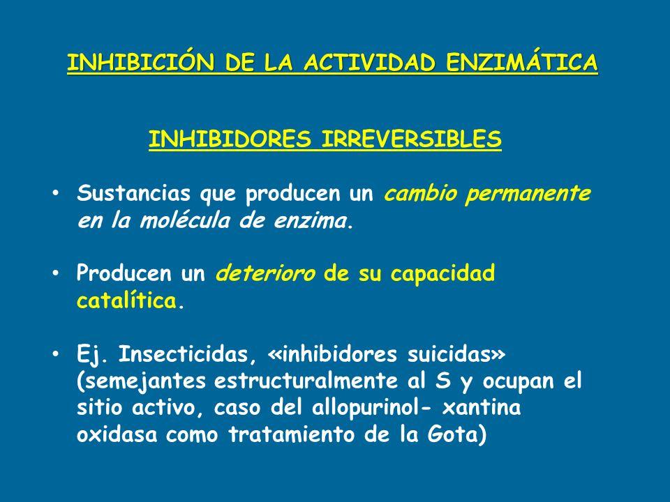 INHIBIDORES IRREVERSIBLES Sustancias que producen un cambio permanente en la molécula de enzima. Producen un deterioro de su capacidad catalítica. Ej.