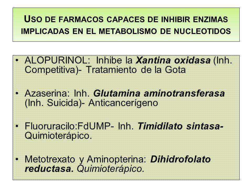 U SO DE FARMACOS CAPACES DE INHIBIR ENZIMAS IMPLICADAS EN EL METABOLISMO DE NUCLEOTIDOS ALOPURINOL: Inhibe la Xantina oxidasa (Inh. Competitiva)- Trat