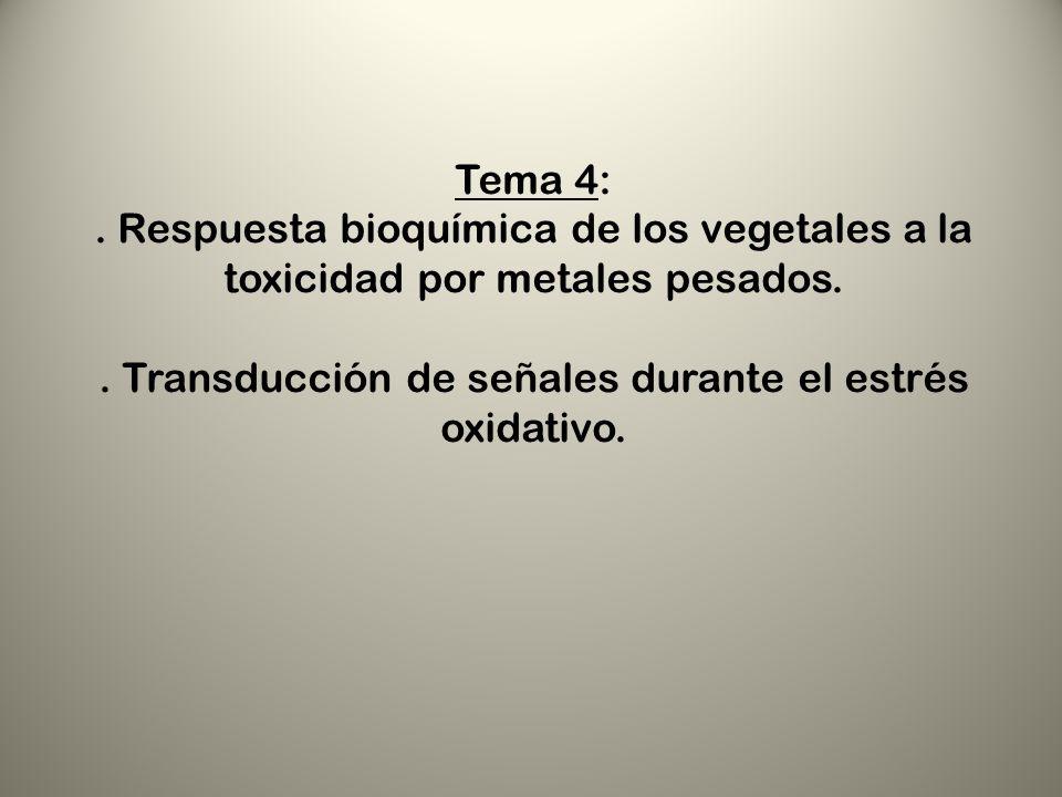 Tema 4:. Respuesta bioquímica de los vegetales a la toxicidad por metales pesados.. Transducción de señales durante el estrés oxidativo.