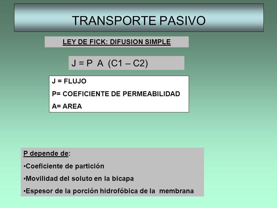 TRANSPORTE PASIVO J = P A (C1 – C2) J = FLUJO P= COEFICIENTE DE PERMEABILIDAD A= AREA P depende de: Coeficiente de partición Movilidad del soluto en l